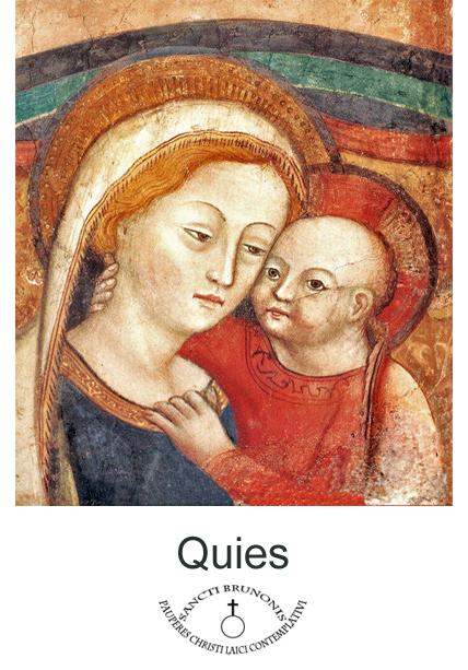quies_logo.png